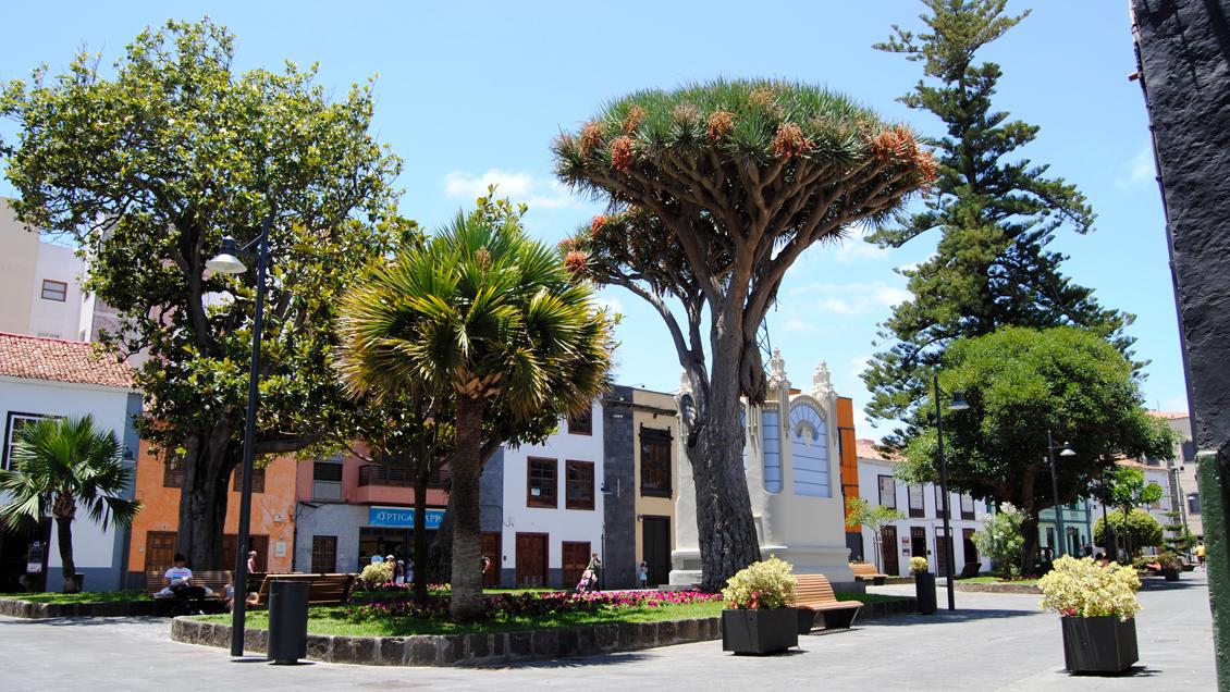 San Cristobal de La Laguna, Ciudad Patrimonio de la Humanidad
