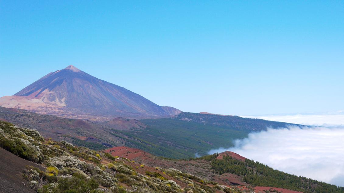 Museo de la Naturaleza y el Hombre, <br> Santa Cruz de Tenerife