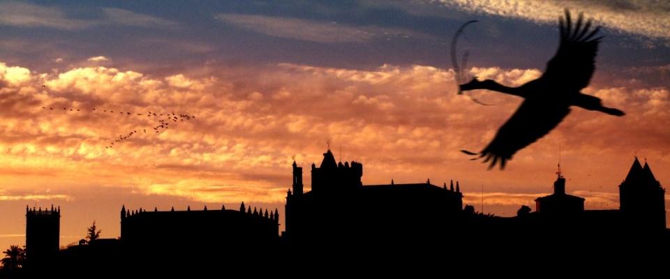 #ContarElArte: Cáceres, tres momentos y tres espacios para una luz sin tiempo